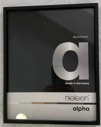 cadre nielsen ALPHA